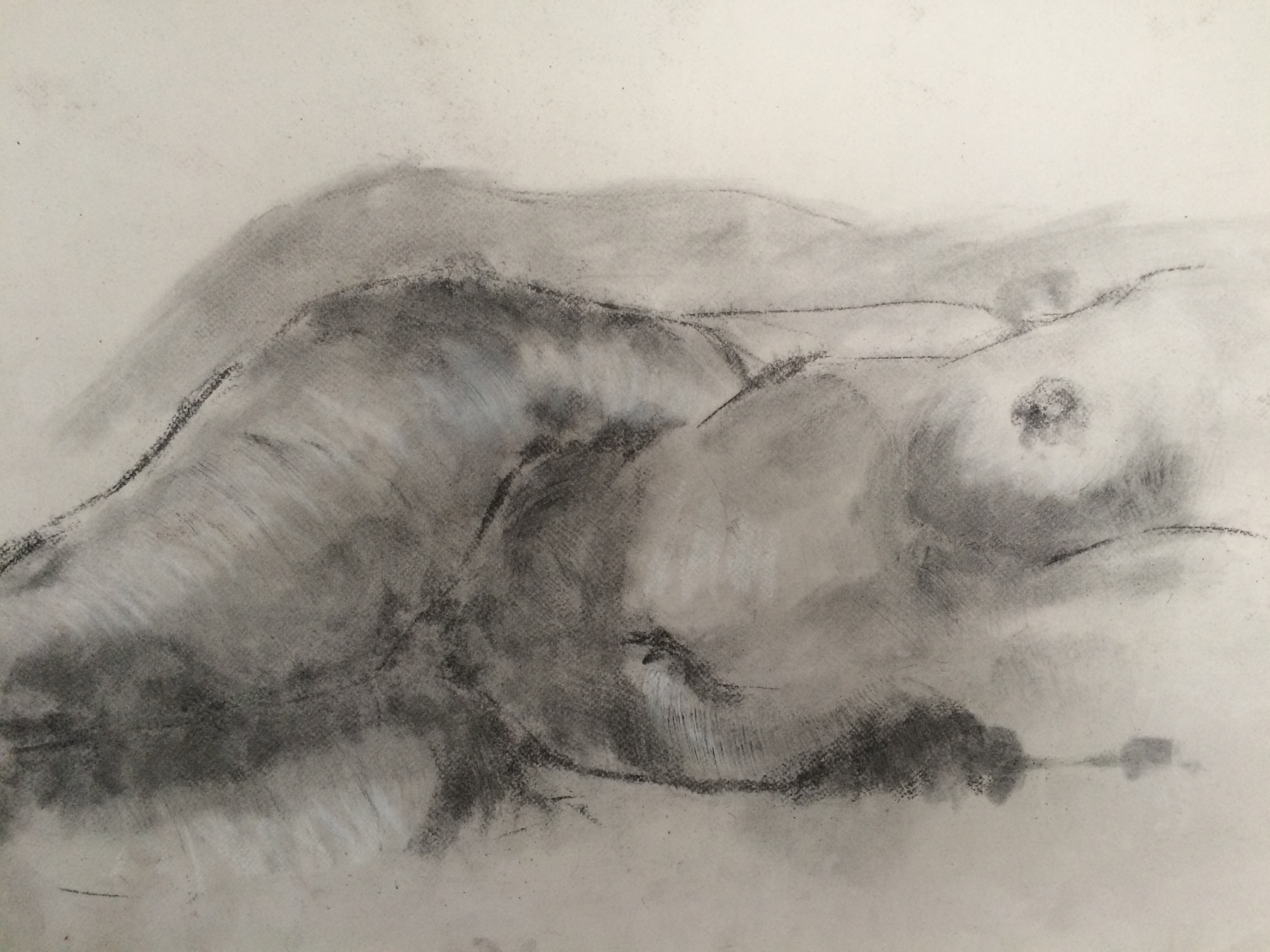 Life Drawing Studies for Sculpture